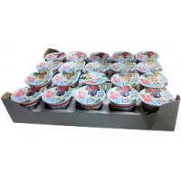 YOGURT FRUTTA ASSORTITI GR.125